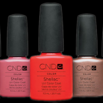 cnd-shellac-collection