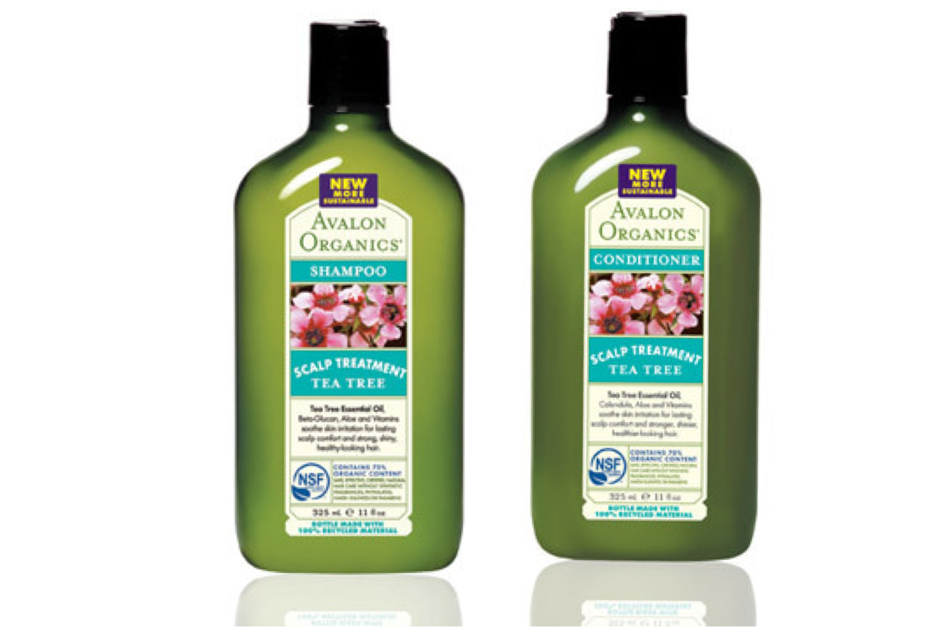 Natural Shampoo And Conditioner Whole Foods