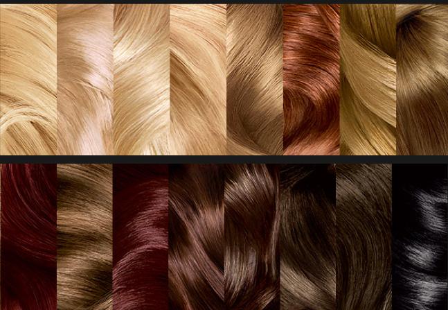 L'Oréal Paris Préférence Mousse Absolue Hair Color