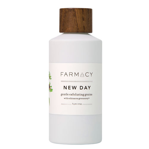 Favorite Skincare Products of 2015 - Farmacy New Day